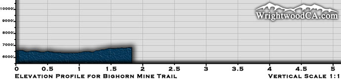 Bighorn Mine Trail Elevation Profile