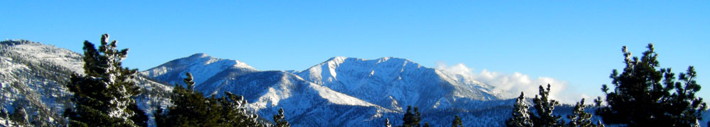 The Wrightwood CA Network