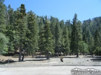 Apple Tree Campground - Wrightwood CA Camping