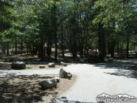 Road in Mountain Oak Campground - Wrightwood CA Camping
