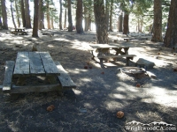 Campsite in Blue Ridge Campground - Wrightwood CA Camping
