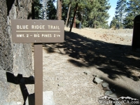Blue Ridge Trail head in Blue Ridge Campground - Wrightwood CA Camping