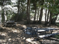 Campsite in Cabin Flat Campground - Wrightwood CA Camping