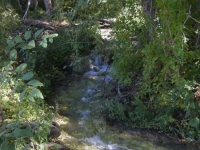 Prairie Fork Creek near Cabin Flat Campground - Wrightwood CA Camping
