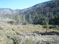Prairie Fork and Cabin Flat Campground - Wrightwood CA