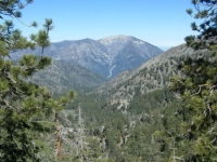 Prairie Fork with Mt Baden Powell in background as viewed from North Backbone Trail - Wrightwood CA
