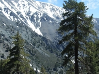Fish Fork and the north face of Mt Baldy - Wrightwood CA