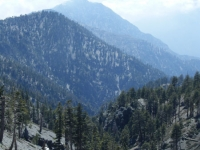 Fish Fork as viewed from Dawson Peak Trail with Iron Mountain in background - Wrightwood CA