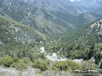 Looking down Vincent Gulch from Bighorn Mine Trail - Wrightwood CA