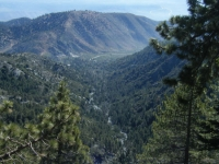 Looking down Slover Canyon from Wright Mountain - Wrightwood CA