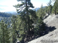 Top of Slover Canyon at Wright Mountain - Wrightwood CA