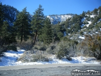 Lone Pine Canyon Road and Slover Canyon - Wrightwood CA