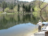 Fisherman at Jackson Lake - Wrightwood CA