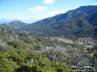 Swarthout Valley - Wrightwood CA
