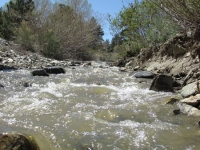 River running through Swarthout Valley as snow melts in local mountains - Wrightwood CA