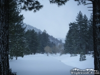 Swarthout Valley after a winter storm - Wrightwood CA