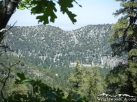 Looking down at Swarthout Valley from the Acorn Trail - Wrightwood CA