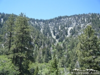 Steep walls of Acorn Canyon - Wrightwood CA