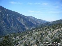 Looking down at Vincent Gap from Inspiration Point - Wrightwood CA