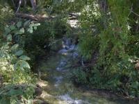 Creek on Prairie Fork Trail - Wrightwood CA Hiking