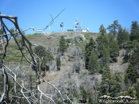 Looking up at Blue Ridge from Lightning Ridge Trail - Wrightwood CA Hiking