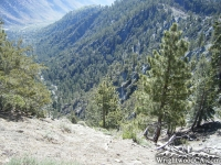 Pacific Crest Trail (PCT) at top of Wright Mountain, overlooking Slover Canyon - Wrightwood CA Hiking