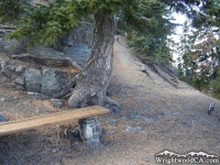 Bench on Mt Baden Powell Trail - Wrightwood CA Hiking