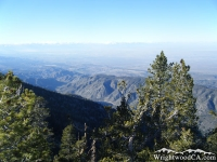Looking down toward Antelope Valley from Mt Baden Powell Trail - Wrightwood CA Hiking