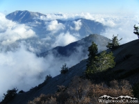 Mt Baldy (left) and Iron Mountain (right) from top of Mt Baden Powell - Wrightwood CA Hiking