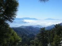 Looking toward San Bernardino Mountains from North Backbone Trail - Wrightwood CA Hiking