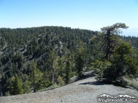 Looking back at Wright Mountain on North Backbone Trail - Wrightwood CA Hiking