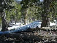Snow on Pine Mountain off North Backbone Trail - Wrightwood CA Hiking