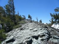 North Backbone Trail climbing Dawson Peak - Wrightwood CA Hiking