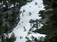 Snow on North Backbone Trail of Mt Baldy - Wrightwood CA Hiking