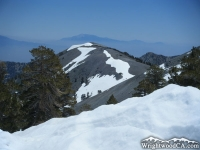 North Backbone Trail on Mt Baldy - Wrightwood CA Hiking