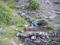 Creek crossing on Pine Mountain Ridge Trail - Wrightwood CA Hiking