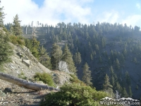 Pine Mountain Ridge Trail - Wrightwood CA Hiking