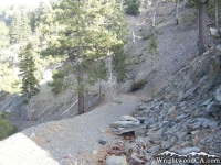 Climbing Pine Mountain Ridge Trail - Wrightwood CA Hiking