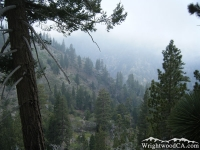 Looking down toward Fish Fork from the Fish Fork Trail - Wrightwood CA Hiking