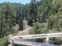 Start of Bighorn Mine Trail - Wrightwood CA Hiking