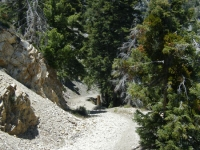 Bighorn Mine Trail - Wrightwood CA Hiking