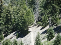 Mine Gulch Trail as it descends into Vincent Gulch after split with Bighorn Mine Trail - Wrightwood CA Hiking