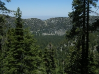 Looking down at Swarthout Valley (Wrightwood) from the Acorn Trail - Wrightwood CA Hiking