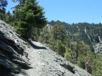 Climbing out of Acorn Canyon on Acorn Trail - Wrightwood CA Hiking