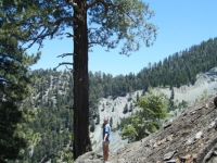 Acorn Trail switchback overlooking the landslide on Wright Mountain - Wrightwood CA Hiking
