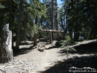 Near top of Acorn Trail - Wrightwood CA Hiking