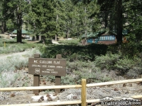 Mc Clellan Flat on Table Mountain - Wrightwood CA Mountains