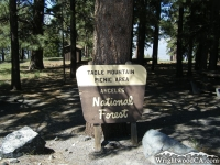 Table Mountain Picnic Area - Wrightwood CA Mountains