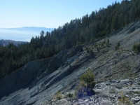 Landslide on Wright Mountain - Wrightwood CA Mountains