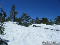 Snow on the North Backbone Trail on Pine Mountain in late Spring - Wrightwood CA Mountains